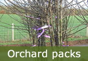 Orchard packs for sale